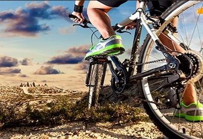 bike best
